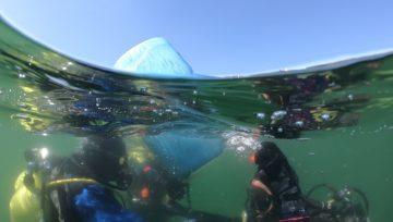 Zasady bezpiecznego nurkowania
